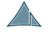 Synergy Law logo